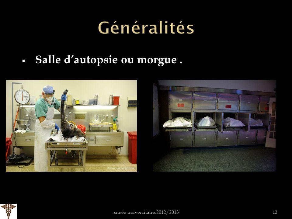 Salle dautopsie ou morgue. année universitaire:2012/201313