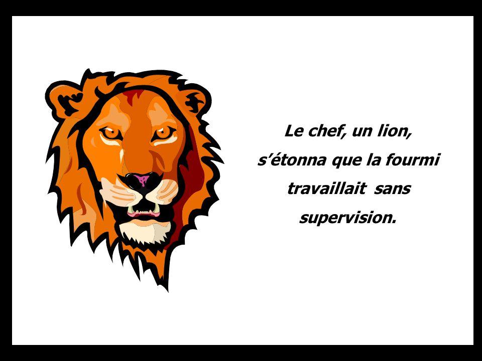 Le chef, un lion, sétonna que la fourmi travaillait sans supervision.