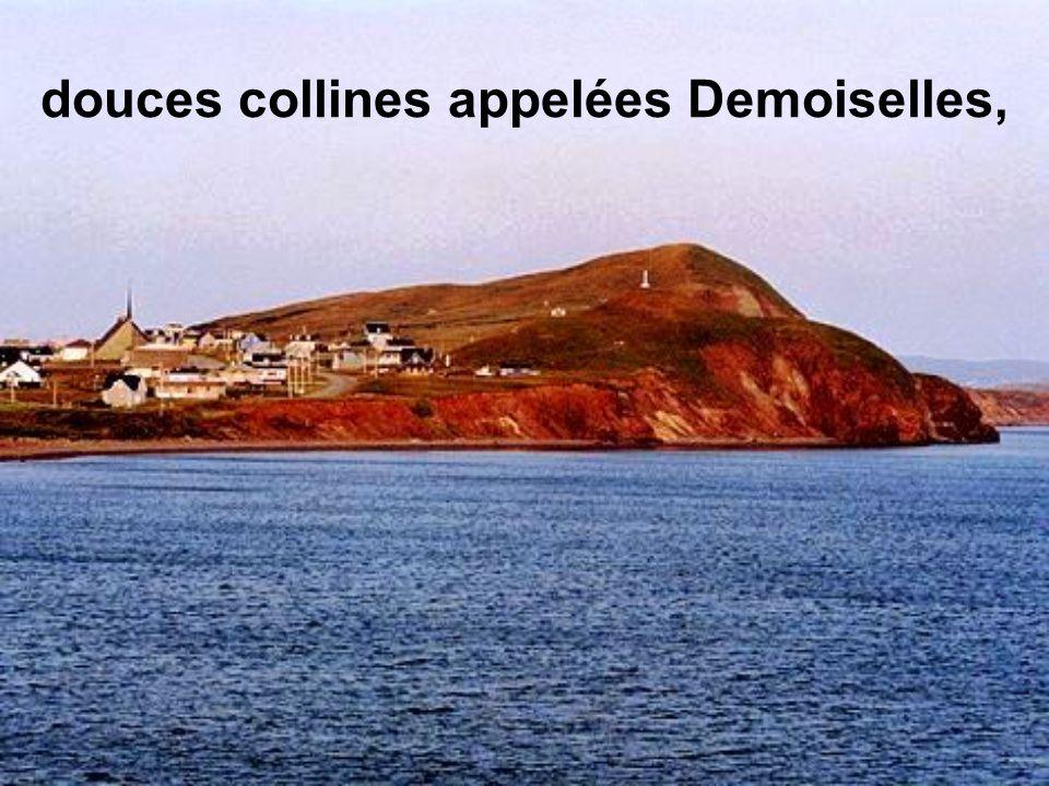 douces collines appelées Demoiselles,