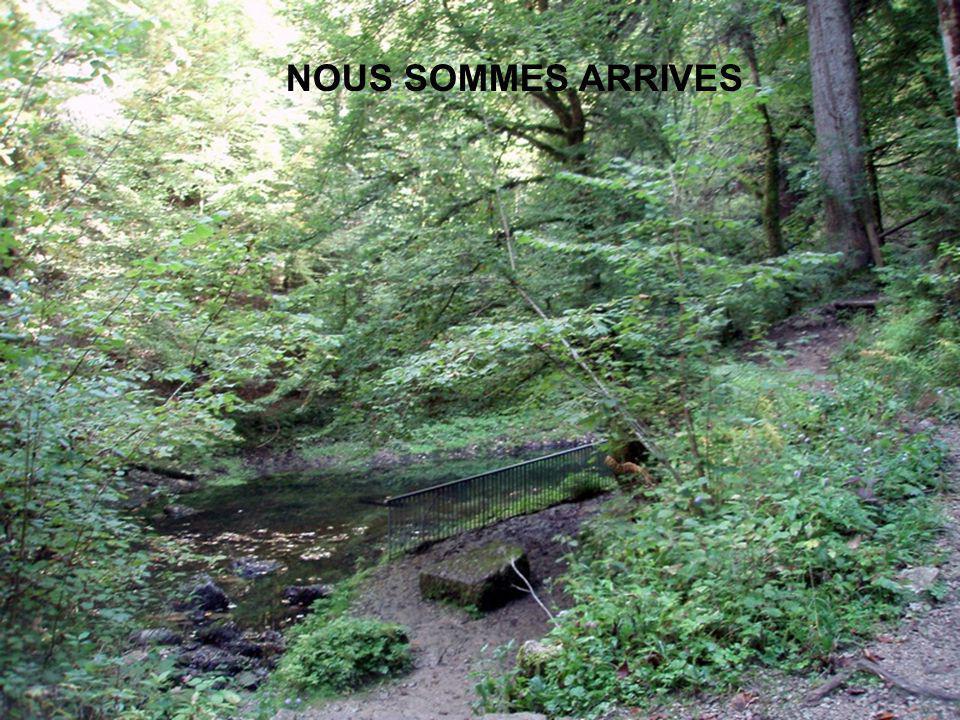 Pour lAin le plus court chemin entre sa source et sa confluence est sans conteste la voie directe. Il rejoint le Rhône en seulement 190 km et ne crain