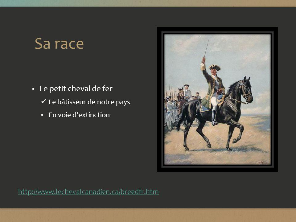 Sa race Le petit cheval de fer Le bâtisseur de notre pays En voie dextinction http://www.lechevalcanadien.ca/breedfr.htm