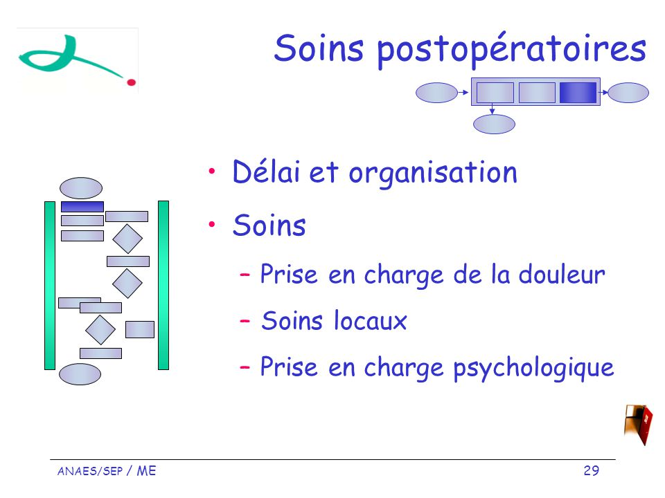 ANAES/SEP / ME 29 Soins postopératoires Délai et organisation Soins –Prise en charge de la douleur –Soins locaux –Prise en charge psychologique