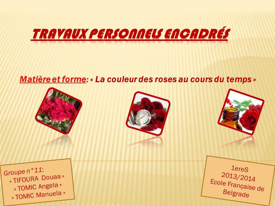 Matière et forme: « La couleur des roses au cours du temps » Groupe n°11: « TIFOURA Douaa » « TOMIC Angela » « TOMIC Manuela » 1ereS 2013/2014 Ecole F