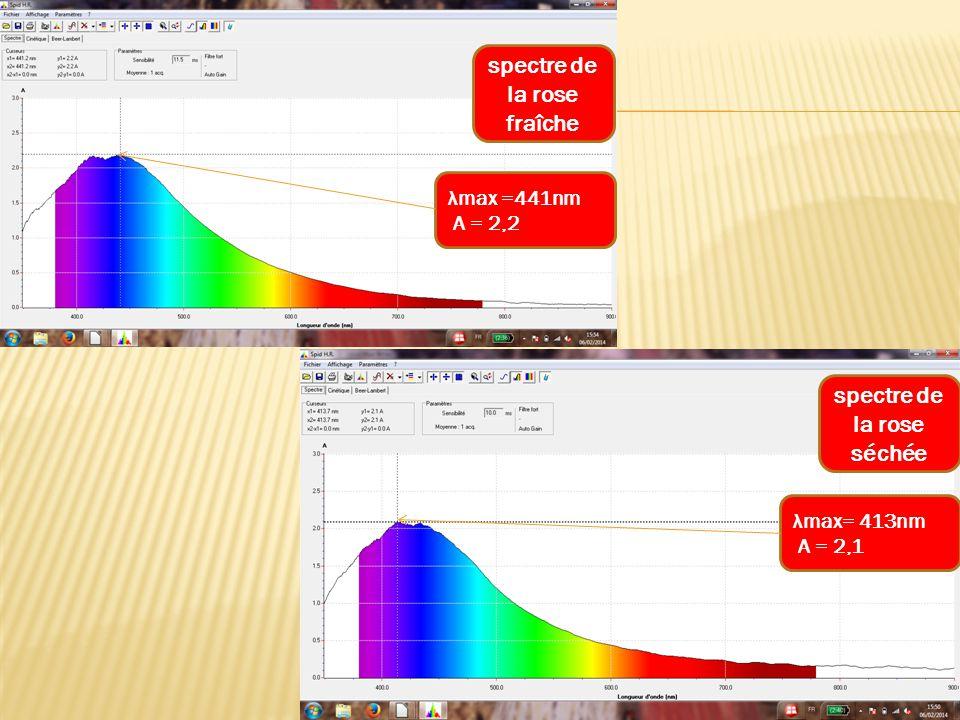spectre de la rose fraîche λmax =441nm A = 2,2 spectre de la rose séchée λmax= 413nm A = 2,1