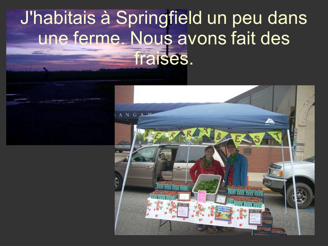 Je suis rentrée à luniversité à Normal et jétudiais en France, à Angers ou j habitais avec une famille.