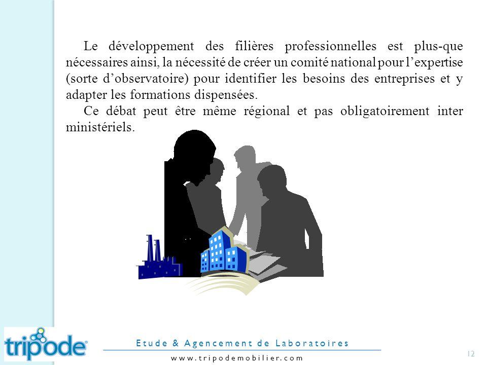 Le développement des filières professionnelles est plus-que nécessaires ainsi, la nécessité de créer un comité national pour lexpertise (sorte dobservatoire) pour identifier les besoins des entreprises et y adapter les formations dispensées.