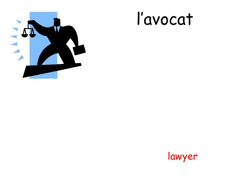 lavocat lawyer