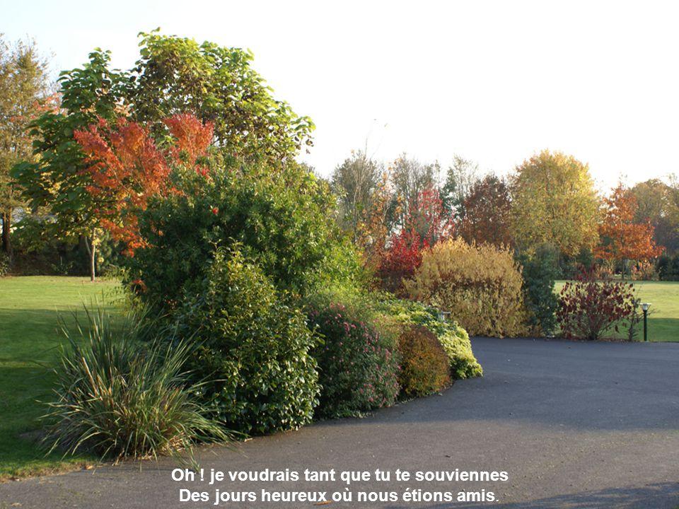 Les feuilles mortes Yves Montand Diaporama automatique et musical de Papi Michel
