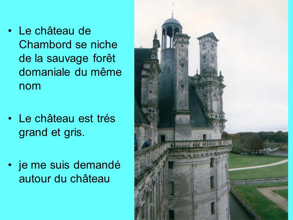 Le château de Chambord se niche de la sauvage forêt domaniale du même nom Le château est trés grand et gris. je me suis demandé autour du château