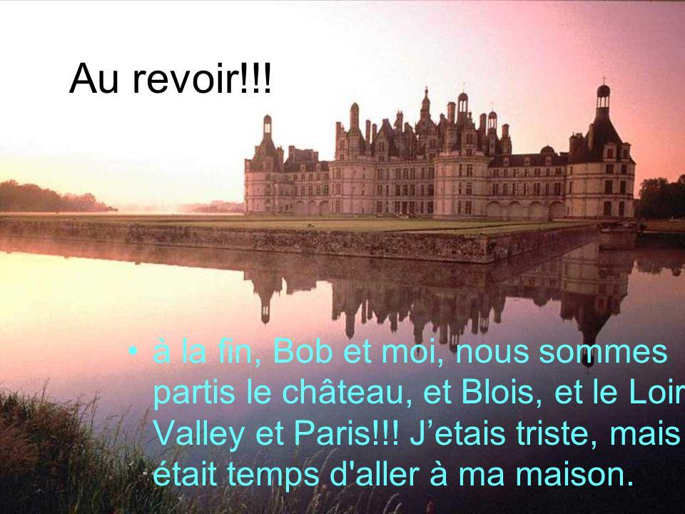Au revoir!!! à la fin, Bob et moi, nous sommes partis le château, et Blois, et le Loire Valley et Paris!!! Jetais triste, mais il était temps d'aller