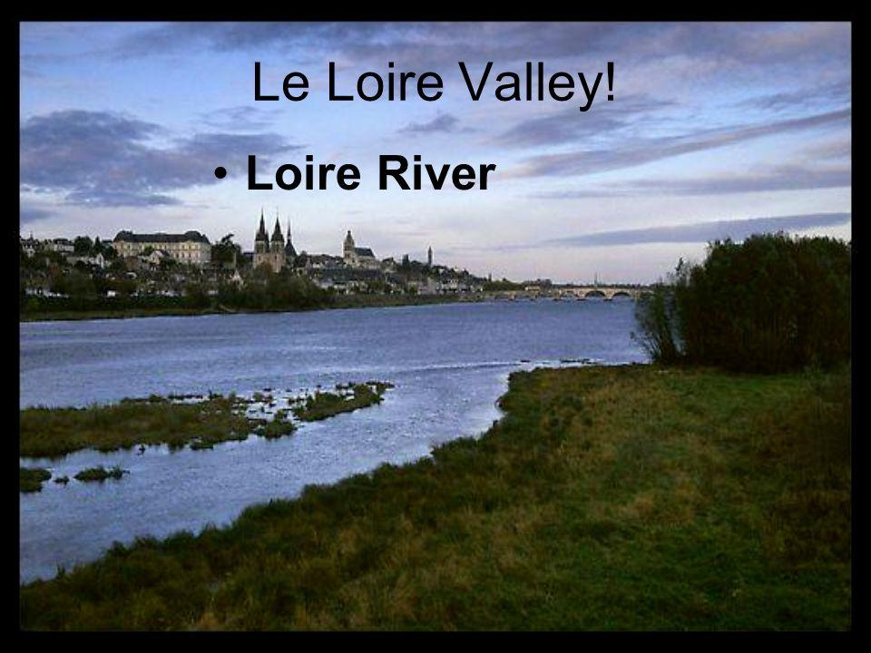 Le Loire Valley! Loire River