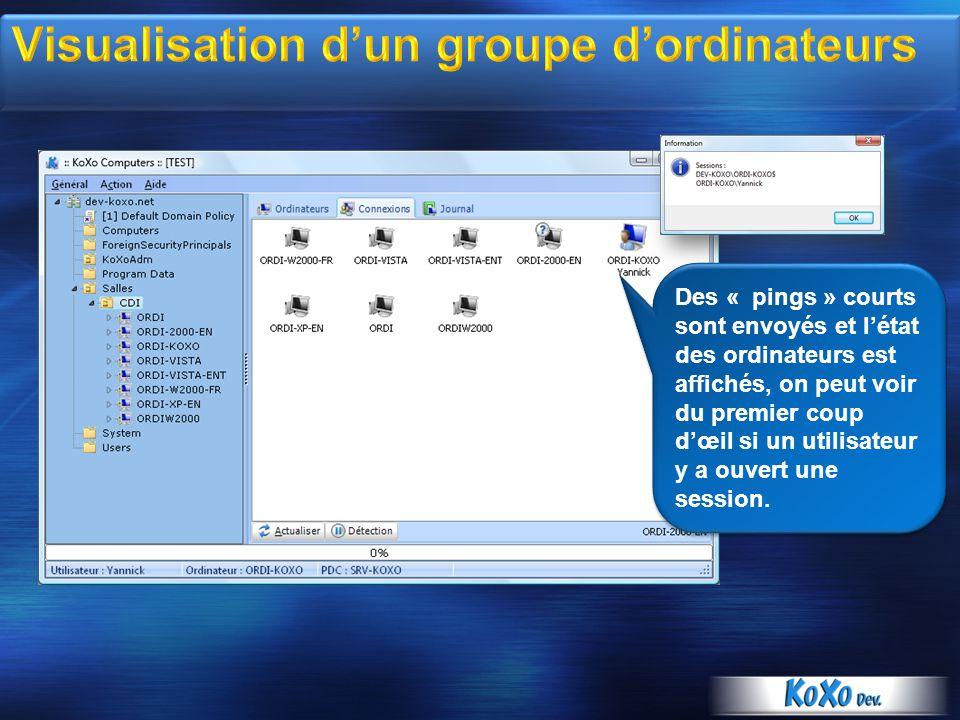 Des « pings » courts sont envoyés et létat des ordinateurs est affichés, on peut voir du premier coup dœil si un utilisateur y a ouvert une session.