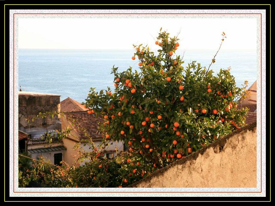Positano, est bâti de part et dautre dune étroite vallée et partant du bord de mer.