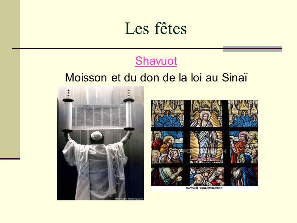 Les fêtes Shavuot Moisson et du don de la loi au Sinaï