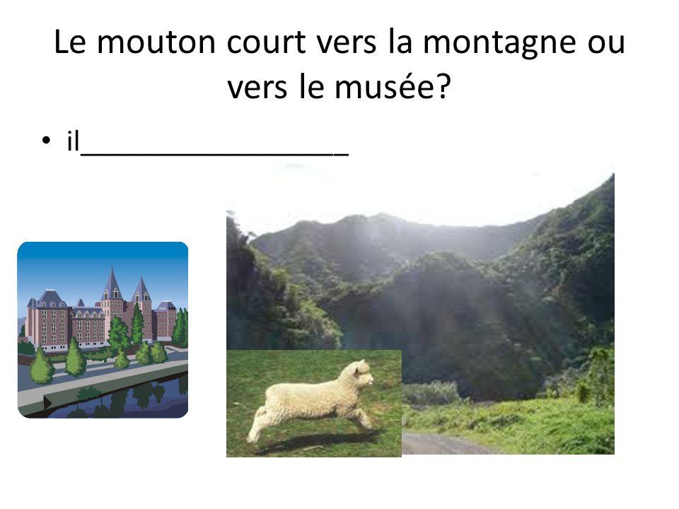 Le mouton court vers la montagne ou vers le musée il__________________