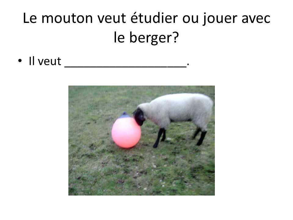 Le mouton veut étudier ou jouer avec le berger Il veut ___________________.