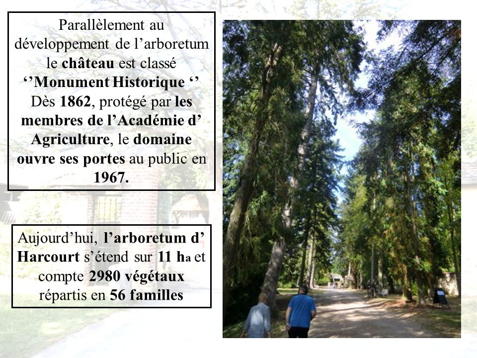 Dès lors, ses botanistes tels que Michaux, Pépin et Vilmorin suivront les orientations tracées par Delamarre en se succédant dans la gestion de la forêt, puis de l Arborétum de collection en regroupant différentes essences exotiques destiné à létude de leurs caractères botaniques et individuels.