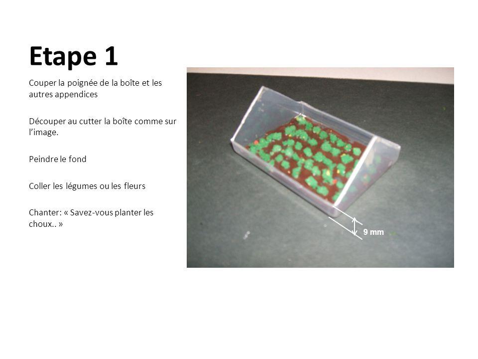 Etape 1 Couper la poignée de la boîte et les autres appendices Découper au cutter la boîte comme sur limage. Peindre le fond Coller les légumes ou les