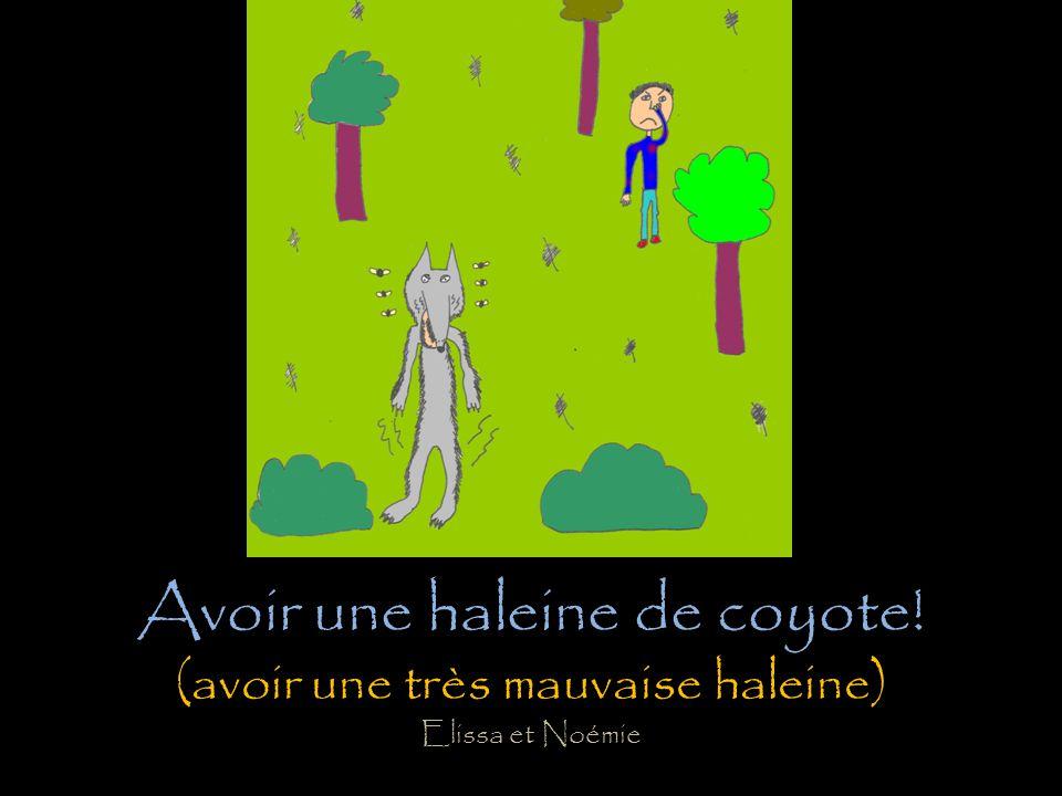 Entre chien et loup! (heure de la journée où il ne fait plus tout à fait jour mais pas encore nuit noire; à ce moment, il est donc difficile de faire