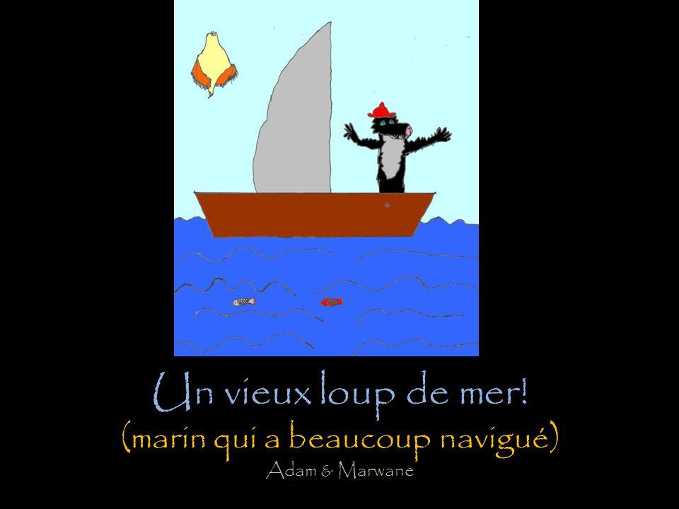 Amusez-vous à retrouver des expressions françaises autour du mot « loup » employées au sens figuré à partir de nos productions dessinées au sens propr