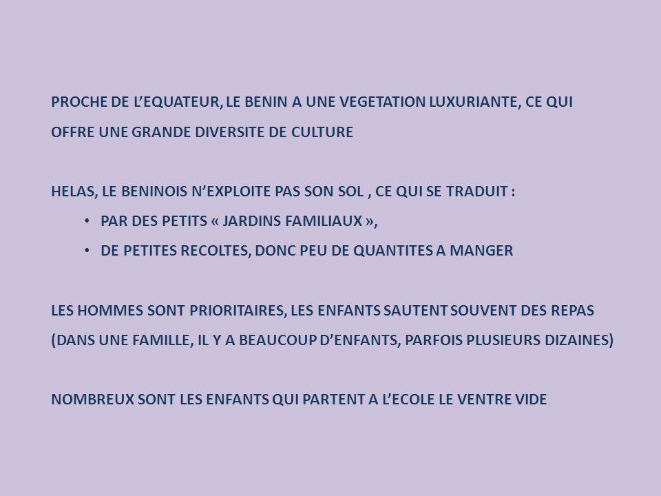 PROCHE DE LEQUATEUR, LE BENIN A UNE VEGETATION LUXURIANTE, CE QUI OFFRE UNE GRANDE DIVERSITE DE CULTURE HELAS, LE BENINOIS NEXPLOITE PAS SON SOL, CE QUI SE TRADUIT : PAR DES PETITS « JARDINS FAMILIAUX », DE PETITES RECOLTES, DONC PEU DE QUANTITES A MANGER LES HOMMES SONT PRIORITAIRES, LES ENFANTS SAUTENT SOUVENT DES REPAS (DANS UNE FAMILLE, IL Y A BEAUCOUP DENFANTS, PARFOIS PLUSIEURS DIZAINES) NOMBREUX SONT LES ENFANTS QUI PARTENT A LECOLE LE VENTRE VIDE
