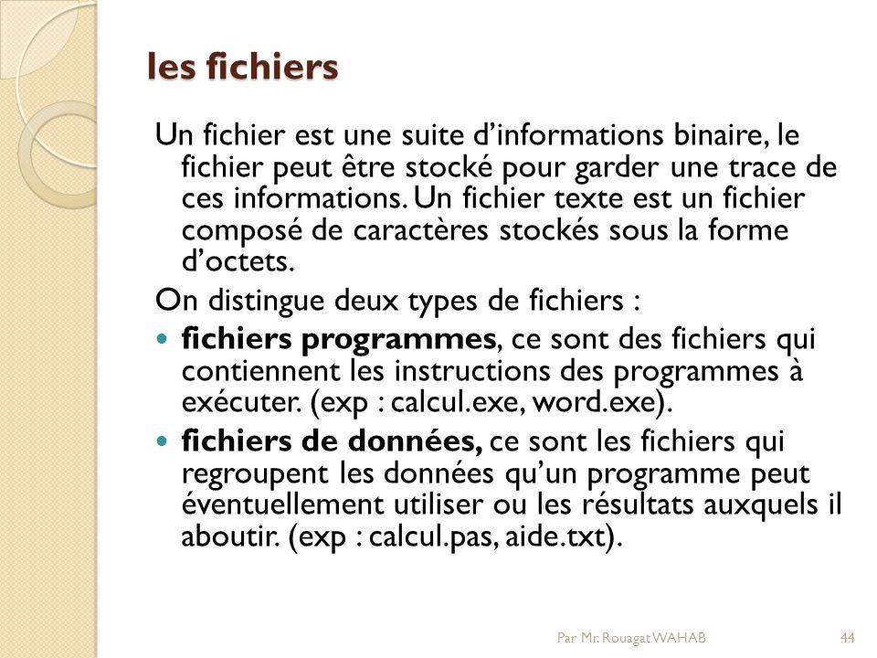 les fichiers Un fichier est une suite dinformations binaire, le fichier peut être stocké pour garder une trace de ces informations.