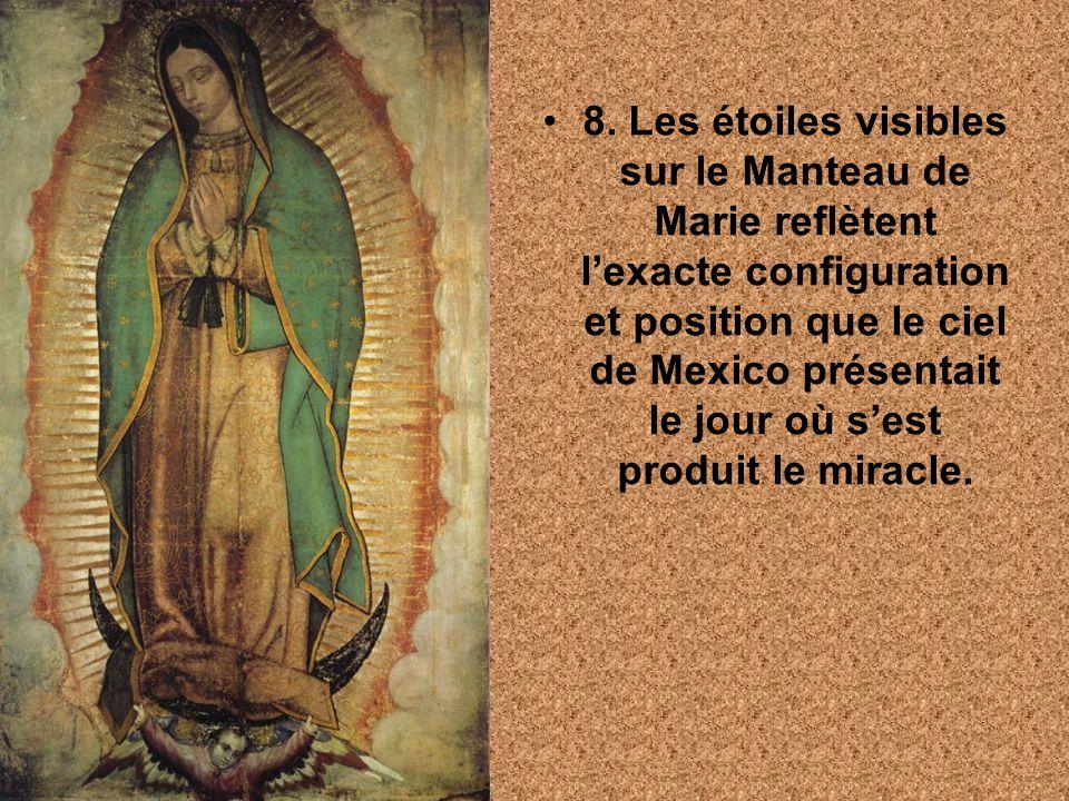 8. Les étoiles visibles sur le Manteau de Marie reflètent lexacte configuration et position que le ciel de Mexico présentait le jour où sest produit l