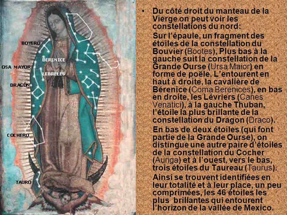 Du côté droit du manteau de la Vierge on peut voir les constellations du nord: Sur lépaule, un fragment des étoiles de la constellation du Bouvier (Bo