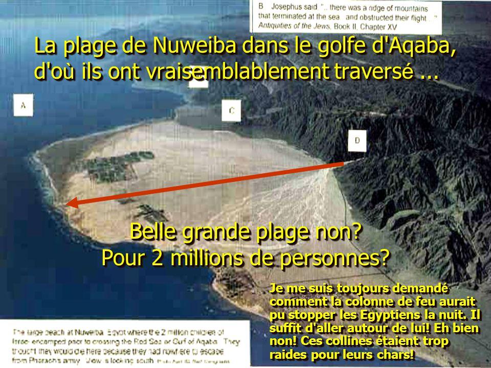 La plage de Nuweiba dans le golfe d'Aqaba, d'o ù ils ont vraisemblablement travers é... Belle grande plage non? Pour 2 millions de personnes? Je me su