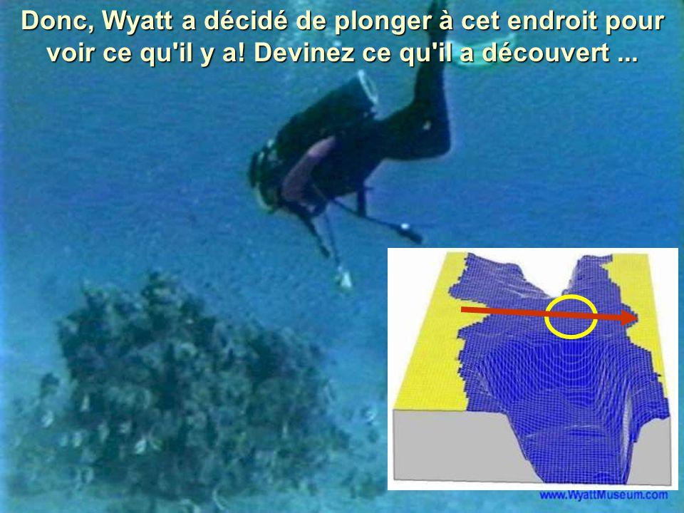Donc, Wyatt a décidé de plonger à cet endroit pour voir ce qu'il y a! Devinez ce qu'il a découvert...