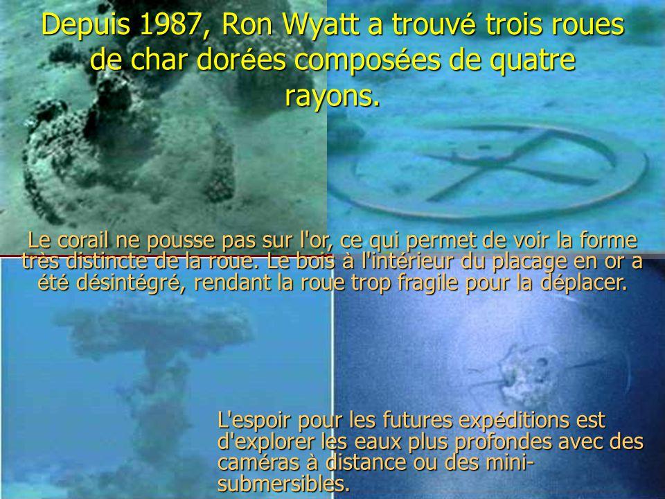 Depuis 1987, Ron Wyatt a trouv é trois roues de char dor é es compos é es de quatre rayons. Le corail ne pousse pas sur l'or, ce qui permet de voir la