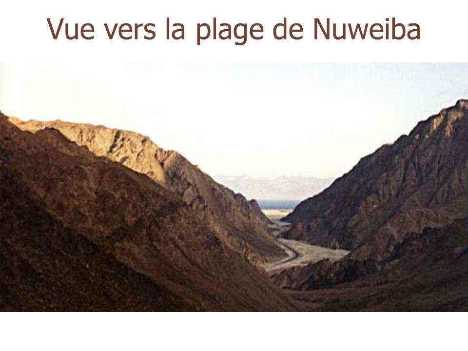 Vue vers la plage de Nuweiba