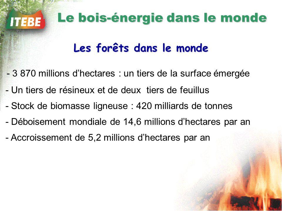 Le bois-énergie dans le monde Les forêts dans le monde - 3 870 millions dhectares : un tiers de la surface émergée - Un tiers de résineux et de deux tiers de feuillus - Stock de biomasse ligneuse : 420 milliards de tonnes - Déboisement mondiale de 14,6 millions dhectares par an - Accroissement de 5,2 millions dhectares par an