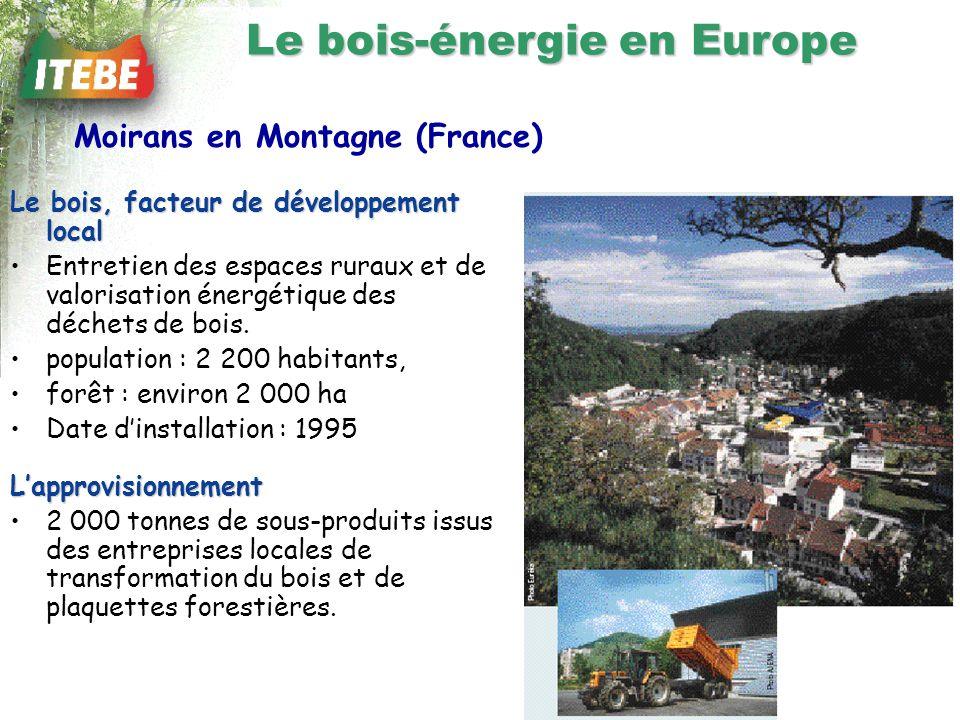 Le bois, facteur de développement local Entretien des espaces ruraux et de valorisation énergétique des déchets de bois.
