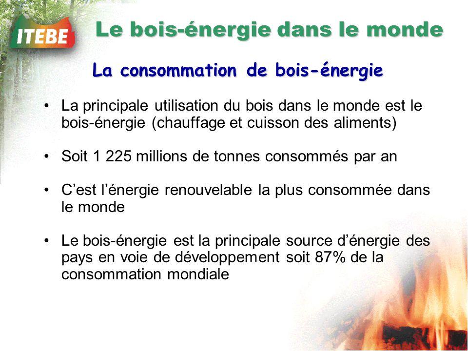 La consommation de bois-énergie La principale utilisation du bois dans le monde est le bois-énergie (chauffage et cuisson des aliments) Soit 1 225 millions de tonnes consommés par an Cest lénergie renouvelable la plus consommée dans le monde Le bois-énergie est la principale source dénergie des pays en voie de développement soit 87% de la consommation mondiale Le bois-énergie dans le monde