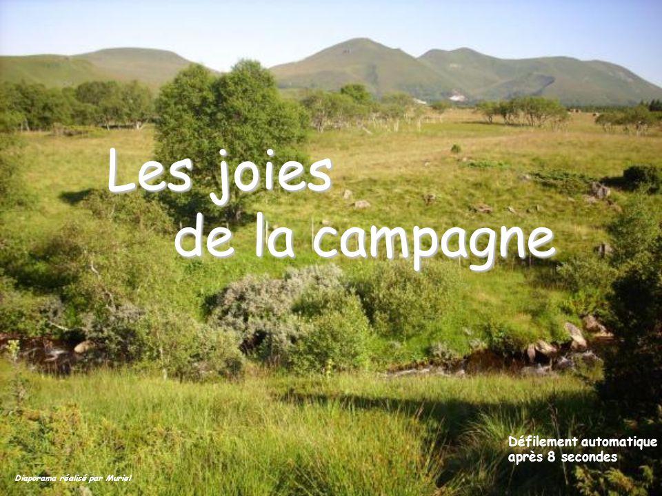 Les joies de la campagne Défilement automatique après 8 secondes Diaporama réalisé par Muriel