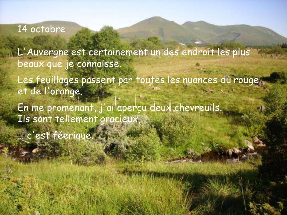 14 octobre L'Auvergne est certainement un des endroit les plus beaux que je connaisse. Les feuillages passent par toutes les nuances du rouge et de l'
