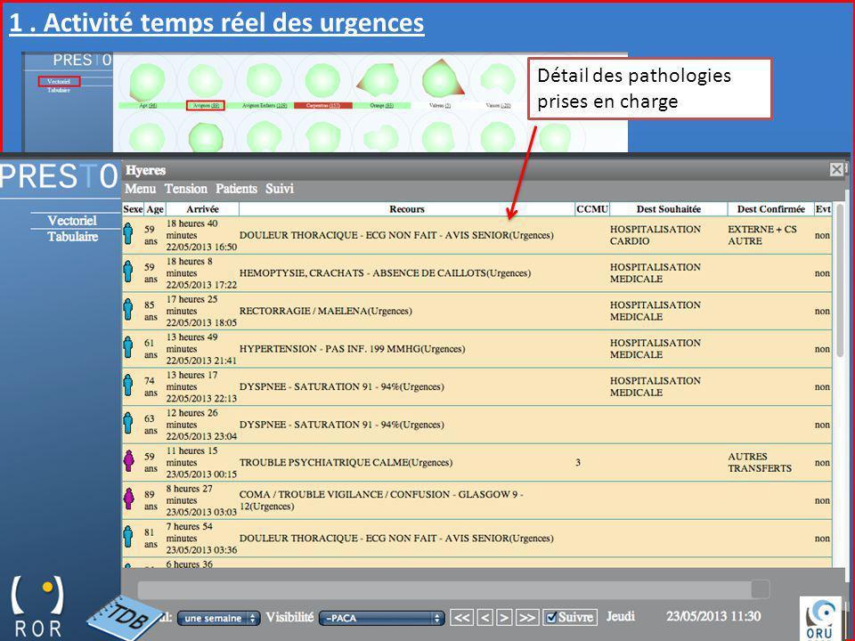 Observatoire Régional des Urgences Provence-Alpes-Côte dAzur Gestion « Hôpital en Tension » 1. Activité temps réel des urgences Détail des pathologies