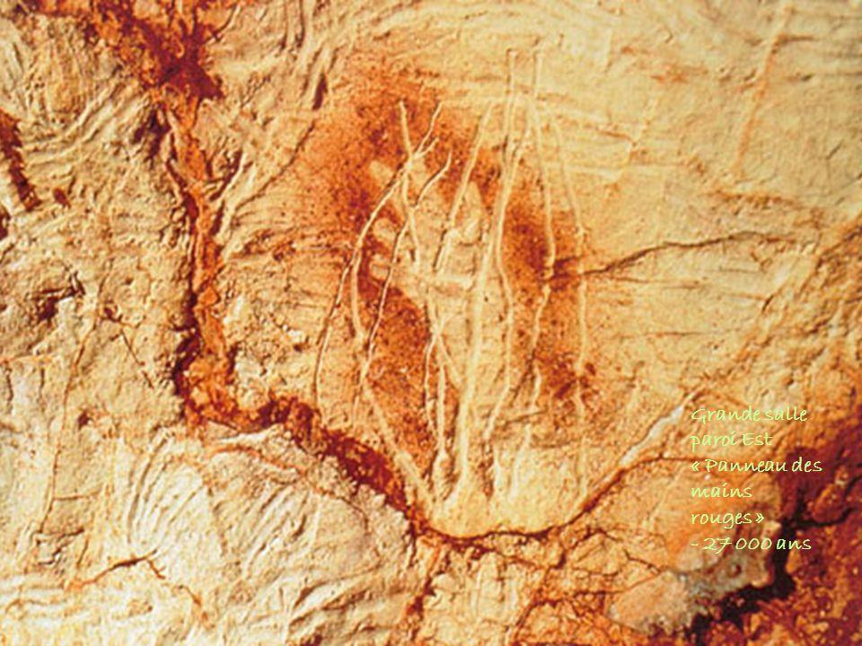 Grande salle paroi Est « Panneau des mains rouges » - 27 000 ans