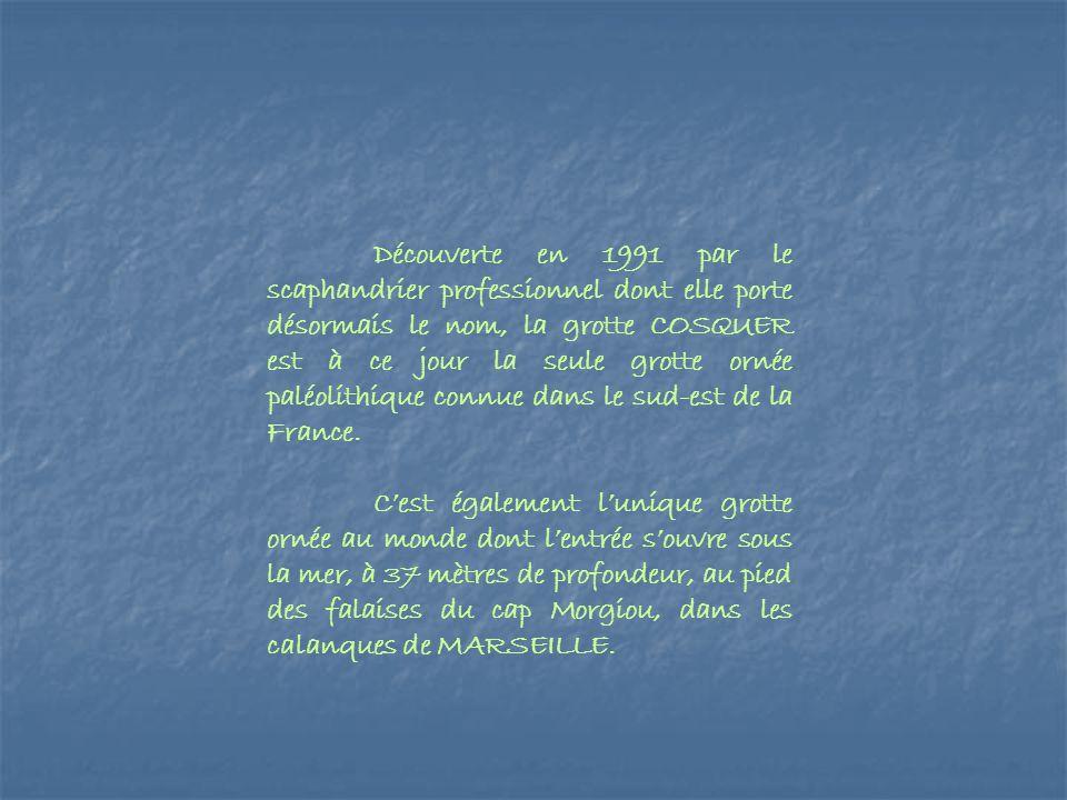 Découverte en 1991 par le scaphandrier professionnel dont elle porte désormais le nom, la grotte COSQUER est à ce jour la seule grotte ornée paléolith