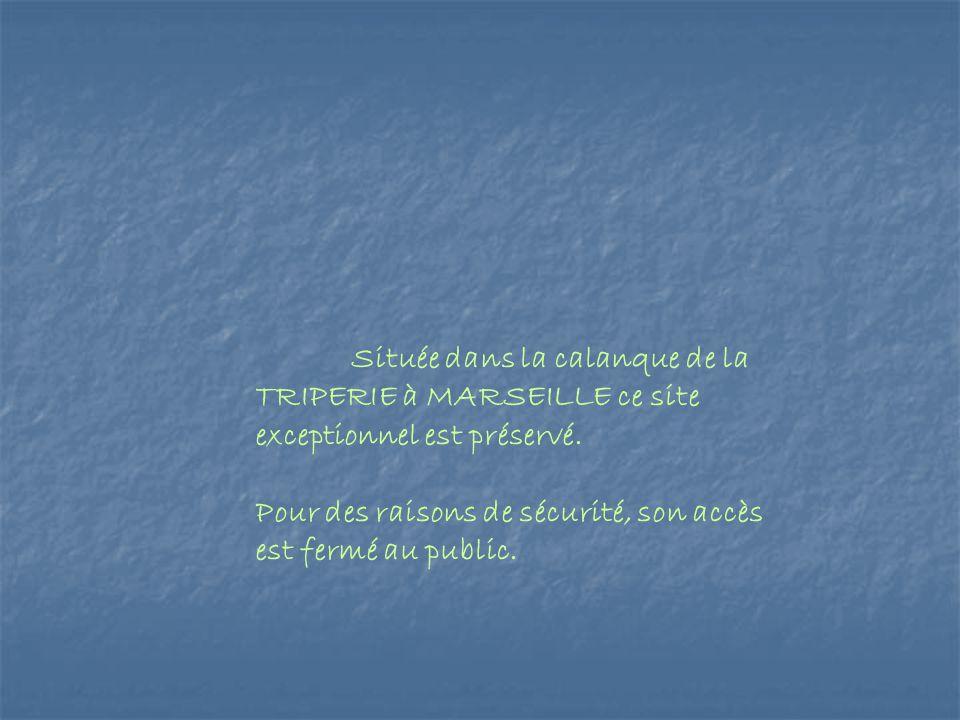 Située dans la calanque de la TRIPERIE à MARSEILLE ce site exceptionnel est préservé. Pour des raisons de sécurité, son accès est fermé au public.