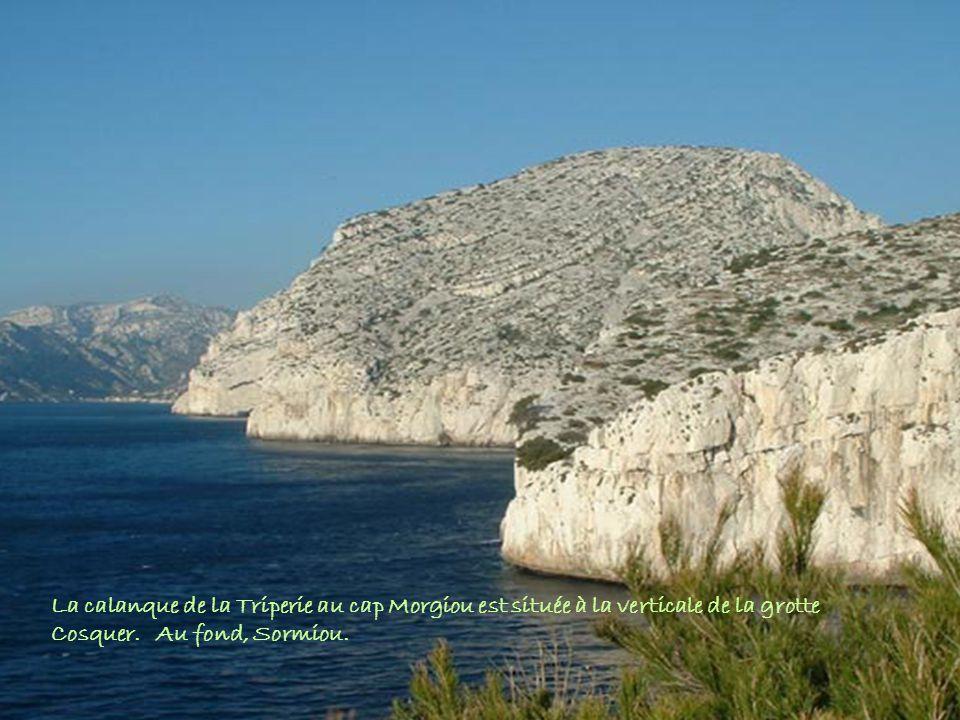 La calanque de la Triperie au cap Morgiou est située à la verticale de la grotte Cosquer. Au fond, Sormiou.