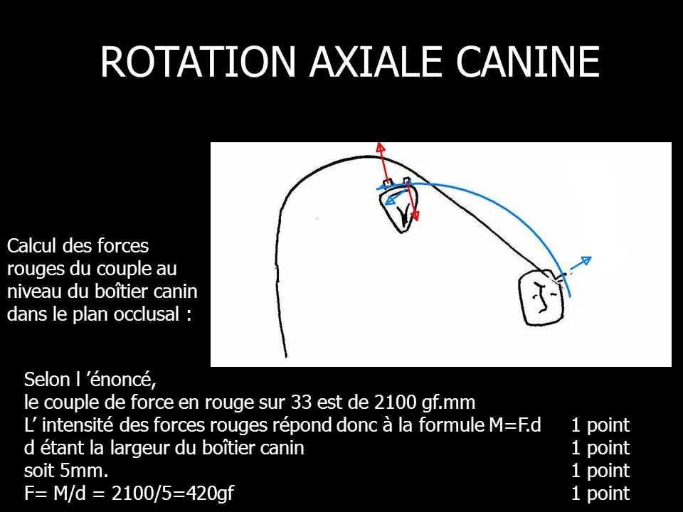 Selon l énoncé, le couple de force en rouge sur 33 est de 2100 gf.mm L intensité des forces rouges répond donc à la formule M=F.d 1 point d étant la largeur du boîtier canin1 point soit 5mm.