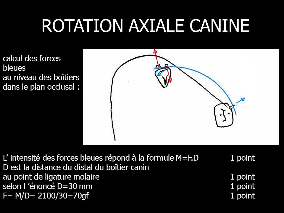 L intensité des forces bleues répond à la formule M=F.D1 point D est la distance du distal du boîtier canin au point de ligature molaire 1 point selon l énoncé D=30 mm1 point F= M/D= 2100/30=70gf 1 point ROTATION AXIALE CANINE calcul des forces bleues au niveau des boîtiers dans le plan occlusal :
