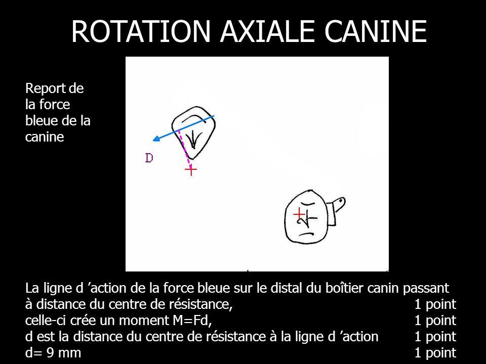 La ligne d action de la force bleue sur le distal du boîtier canin passant à distance du centre de résistance, 1 point celle-ci crée un moment M=Fd, 1 point d est la distance du centre de résistance à la ligne d action 1 point d= 9 mm 1 point ROTATION AXIALE CANINE Report de la force bleue de la canine