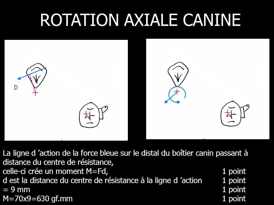 La ligne d action de la force bleue sur le distal du boîtier canin passant à distance du centre de résistance, celle-ci crée un moment M=Fd, 1 point d est la distance du centre de résistance à la ligne d action 1 point = 9 mm 1 point M=70x9=630 gf.mm 1 point ROTATION AXIALE CANINE