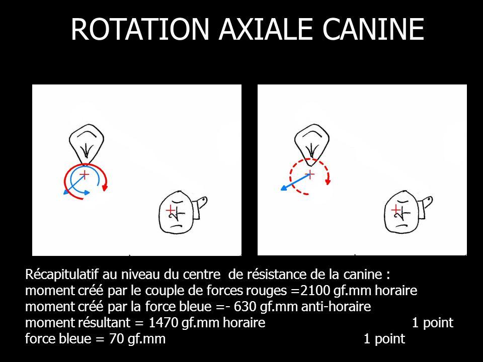Récapitulatif au niveau du centre de résistance de la canine : moment créé par le couple de forces rouges =2100 gf.mm horaire moment créé par la force bleue =- 630 gf.mm anti-horaire moment résultant = 1470 gf.mm horaire 1 point force bleue = 70 gf.mm 1 point ROTATION AXIALE CANINE