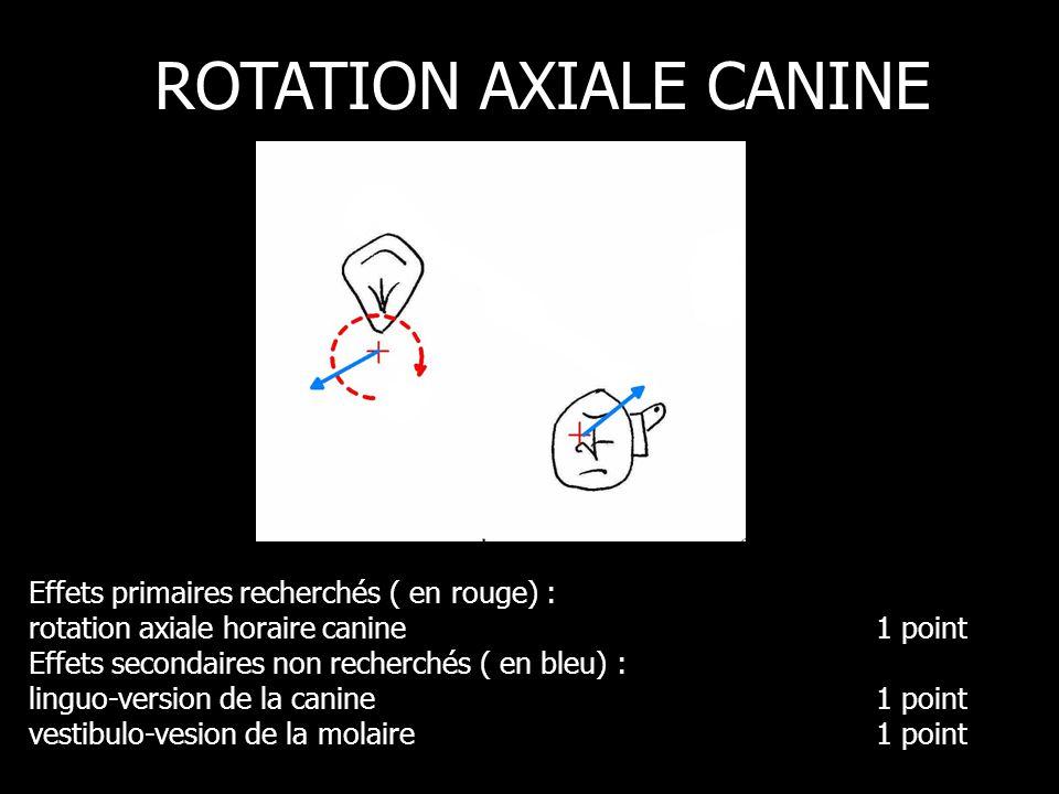 Effets primaires recherchés ( en rouge) : rotation axiale horaire canine1 point Effets secondaires non recherchés ( en bleu) : linguo-version de la canine1 point vestibulo-vesion de la molaire 1 point ROTATION AXIALE CANINE