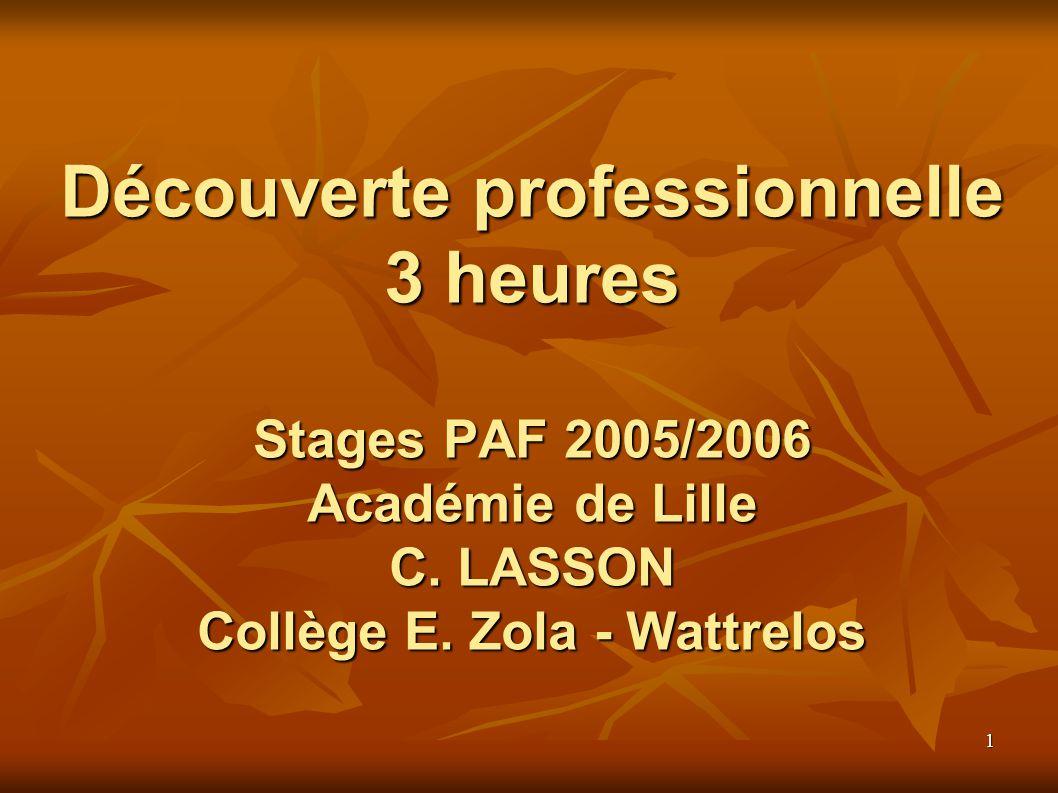 1 Découverte professionnelle 3 heures Stages PAF 2005/2006 Académie de Lille C.