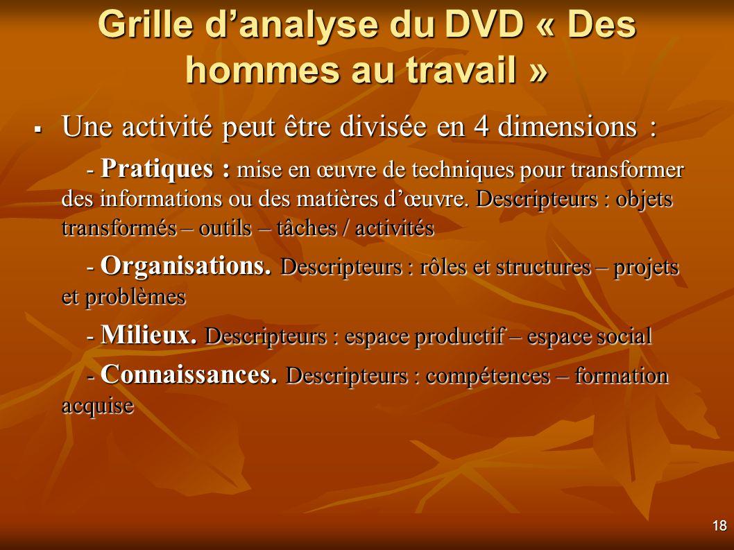 18 Grille danalyse du DVD « Des hommes au travail » Une activité peut être divisée en 4 dimensions : Une activité peut être divisée en 4 dimensions : - Pratiques : mise en œuvre de techniques pour transformer des informations ou des matières dœuvre.